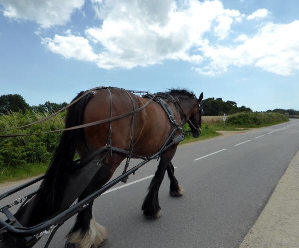 """"""" longue sera la route ...."""" Golfe du Morbihan -1-"""