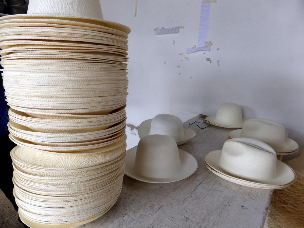 EQUATEUR : fabrique de panamas à Cuenca