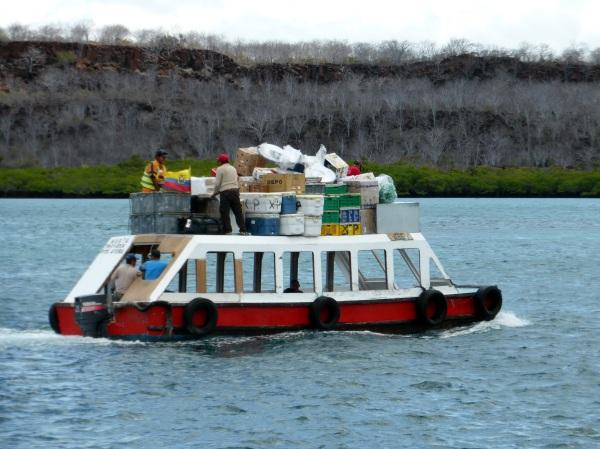 EQUATEUR / GALAPAGOS : fin du voyage ..