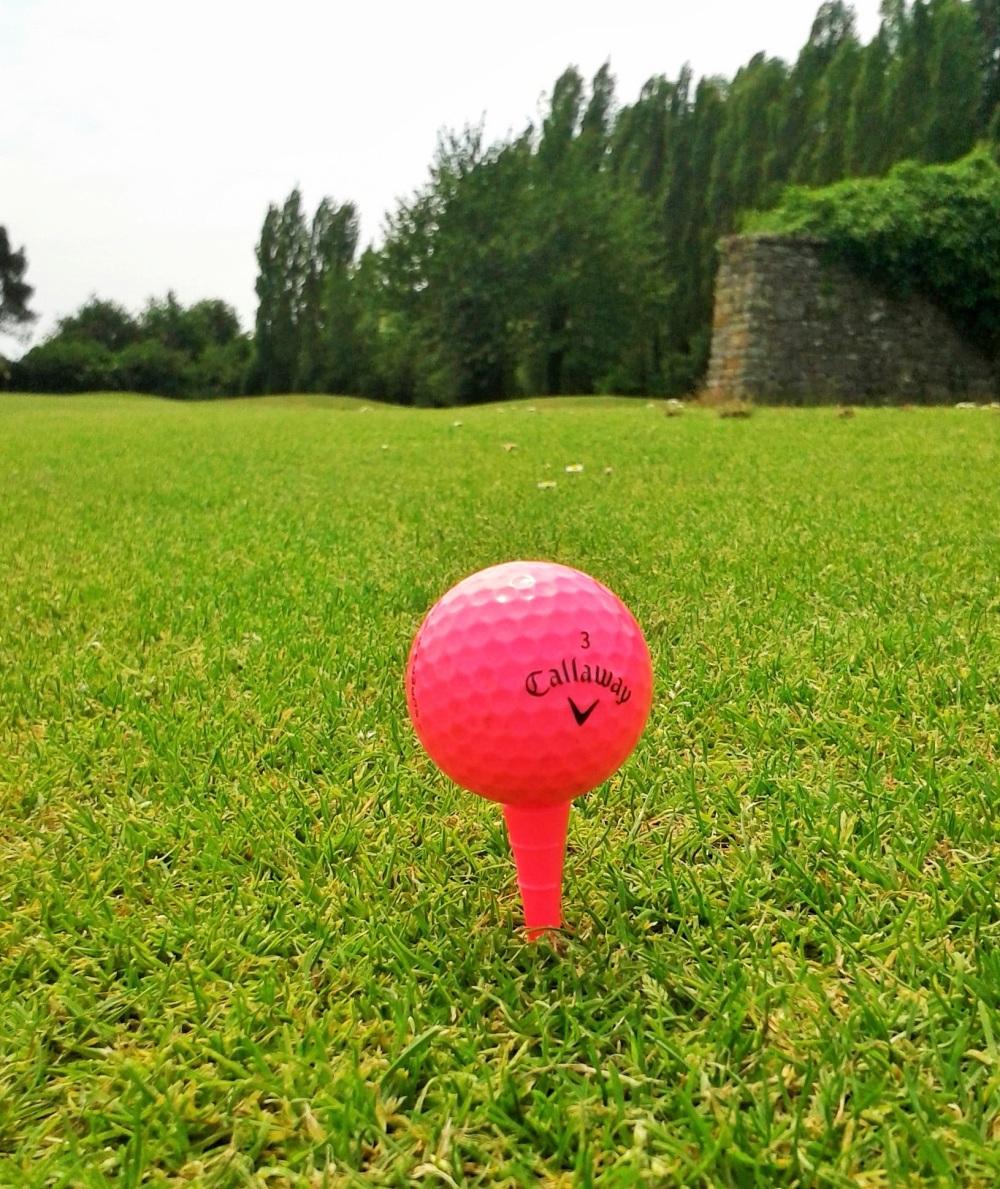 Passion ....  Golf