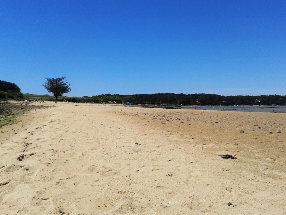 """Golfe du Morbihan : """"Ma"""" plage le matin ..."""