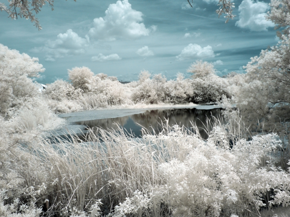 another IR landscape that I happen to like