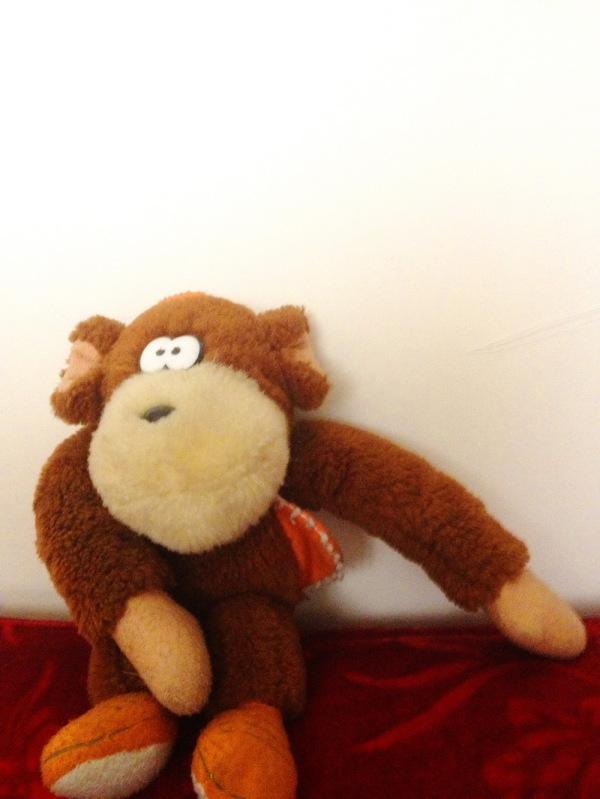 DAY 10 _ این میمون قدیمی ِ تو