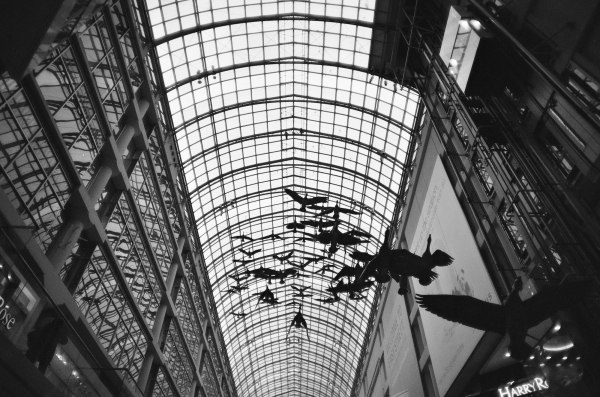 Black and white film scan in toronto eaton center