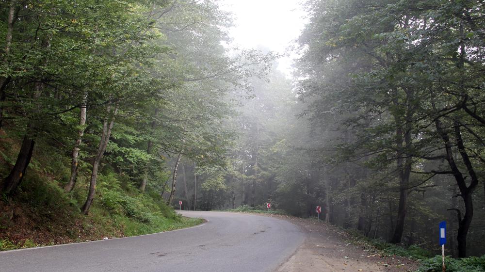 جاده و مه