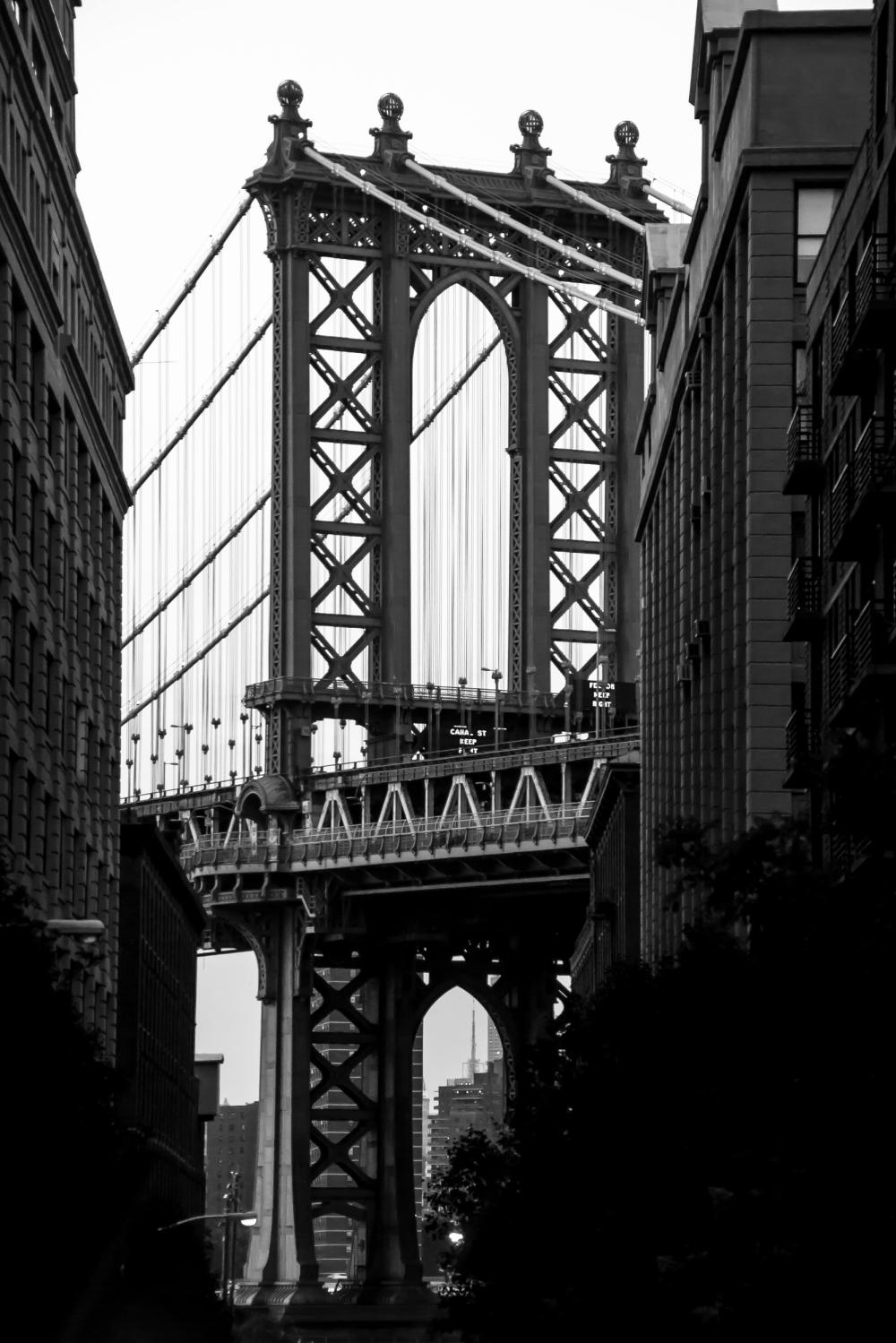 NYC #19