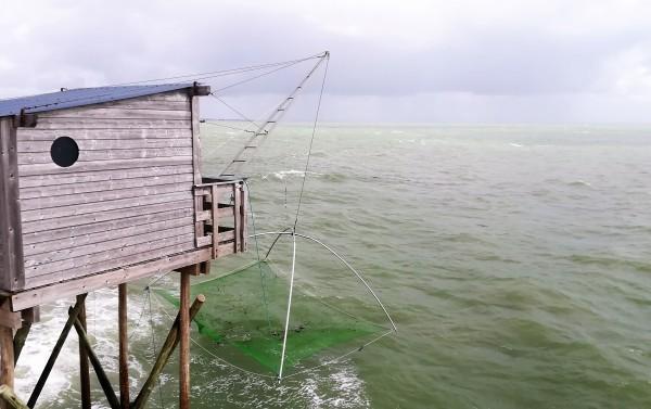 Visite d'une pêcherie à Pornic