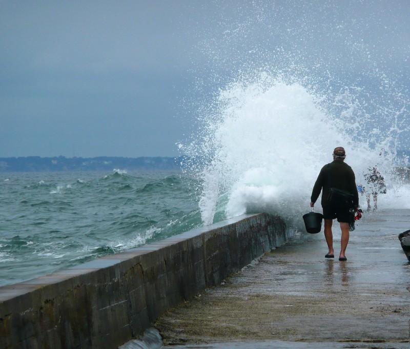 Un pêcheur ne recule devant rien :-))   -2-