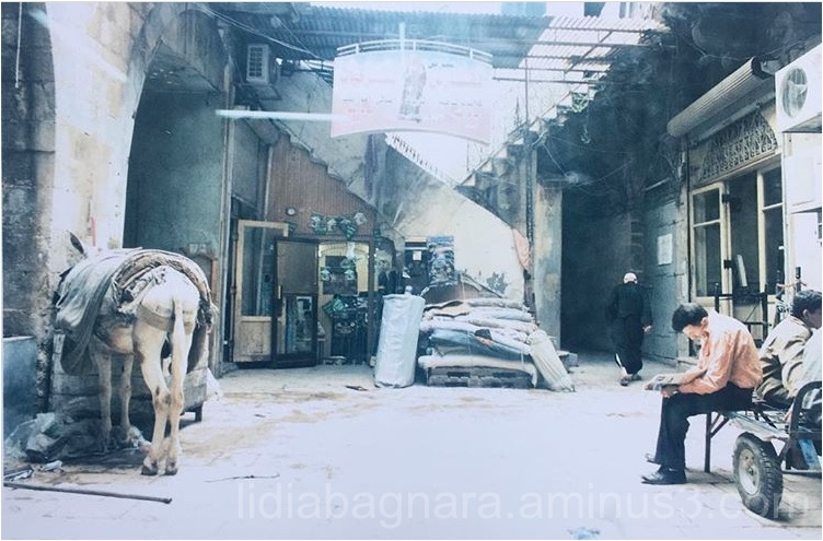 Siria:  Aleppo 2007