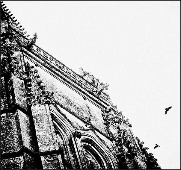 L'église aux oiseaux