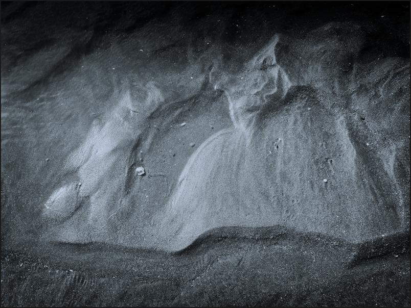 La bête des sables