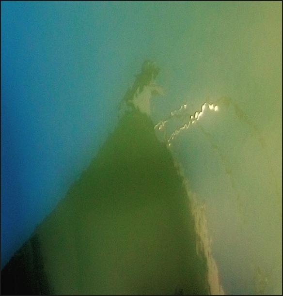 Oléron2011-IM0588