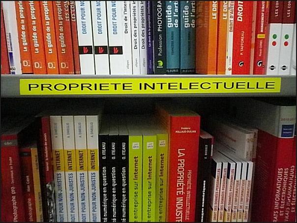 À la librairie !