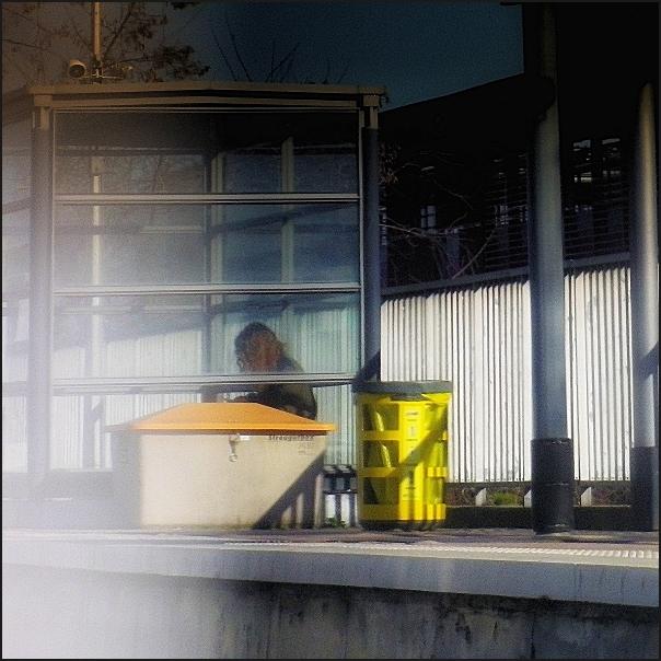 poubelles-IM0740