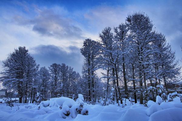 سوز سرماي زمستان