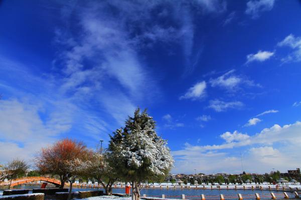 برف بهاری -2