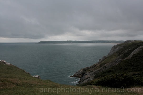 Moody at Three Cliffs