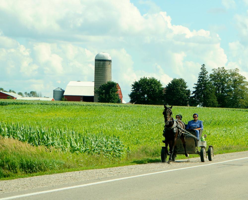 Mennonite Country