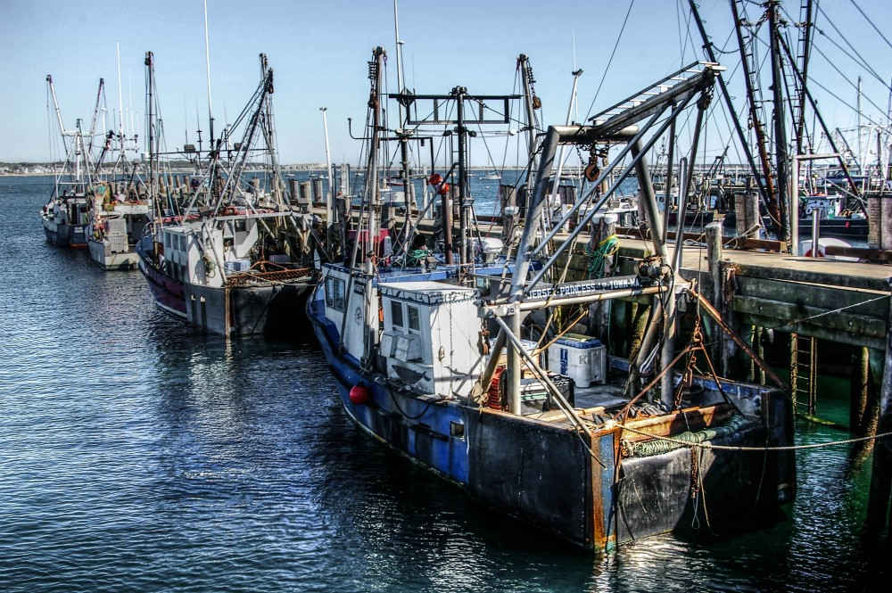 Provincetown Fishing Fleet, Capecod, MA