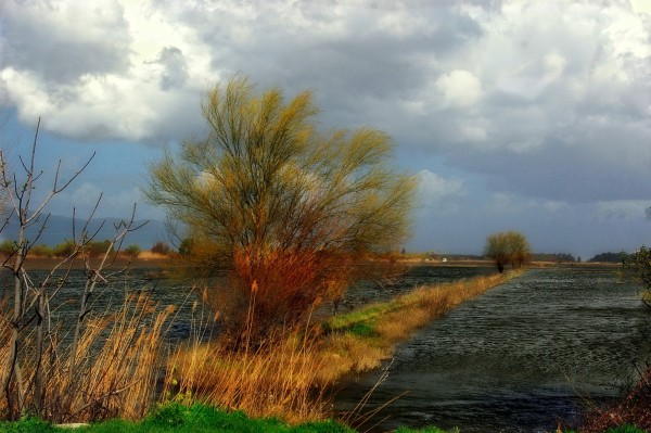 Flood. Incirliova Turkey.