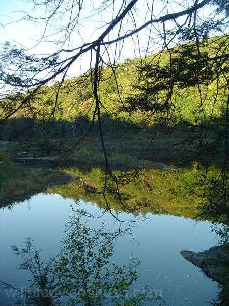 Salmon River oxbow