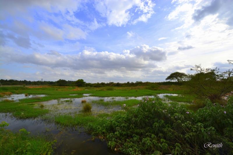 Bangalore Rural image