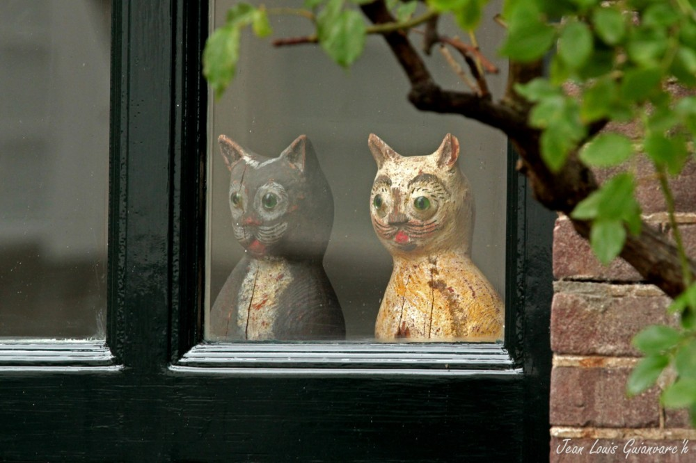 Fenêtre sur cour. / Rear Window.