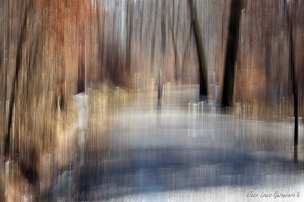 Fantaisies hivernales. (1) / Winter fantasies.
