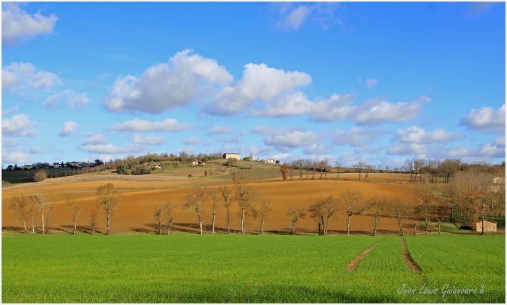 La colline ensoleillée. / The sunny hill.