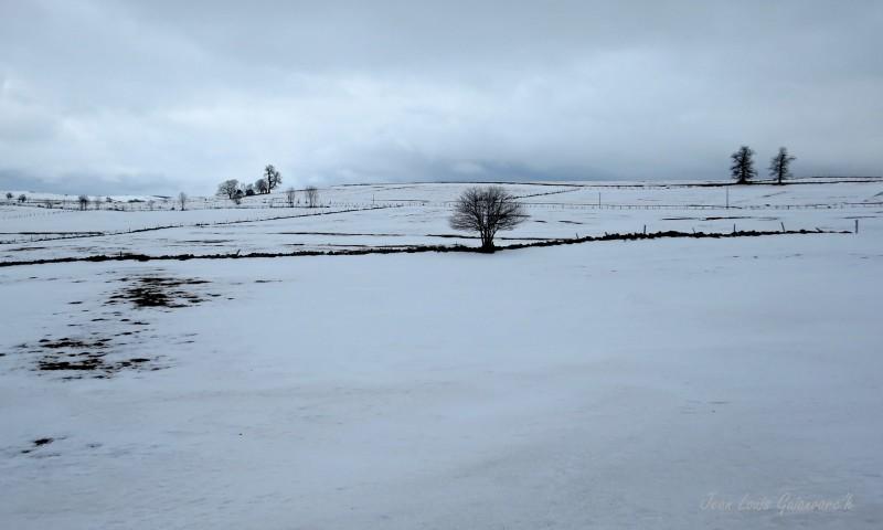neige hiver Winter snow