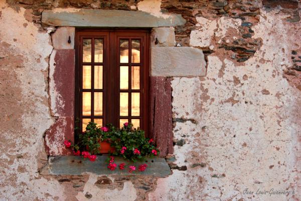 Derrière la fenêtre. / Behind the window.