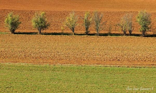 Terres d'automne. (2)
