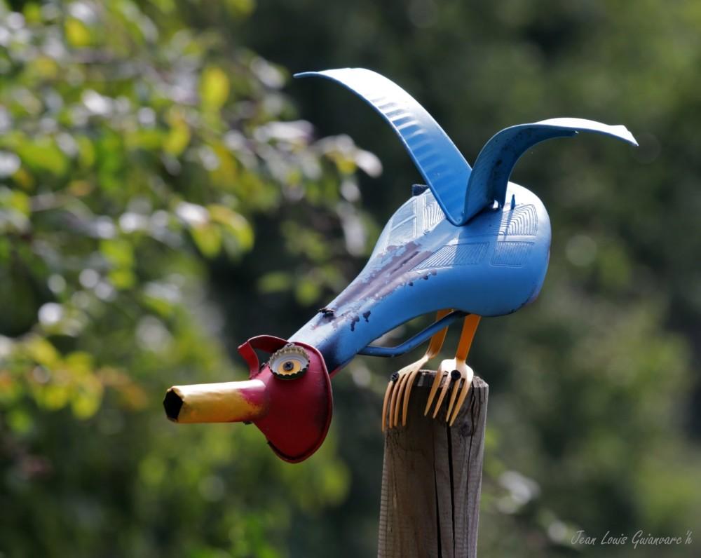 Un drôle d'oiseau
