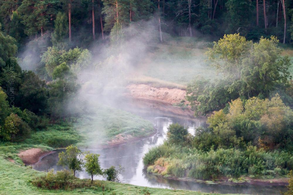 Koiva river