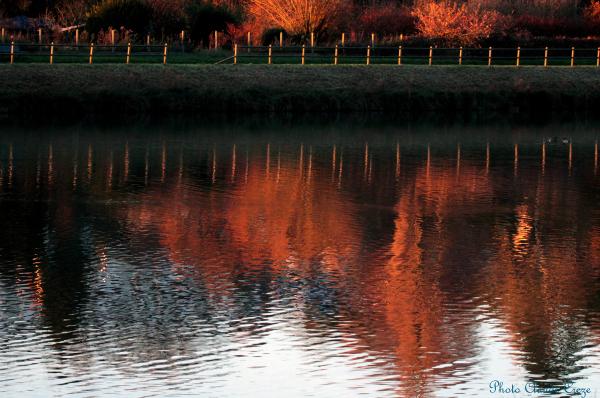 Reflets du lac de Montivilliers