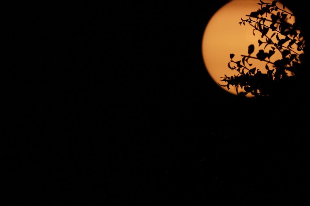 وقتی لامپ شبیه ماه به نظر میاد...