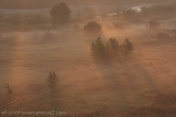 Morning fog in Turin I