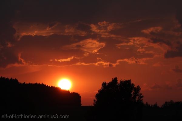 Sunset (IV)