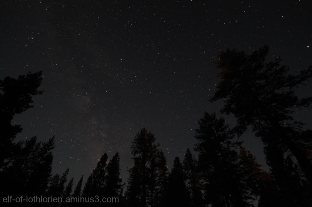 Milky Way (II)