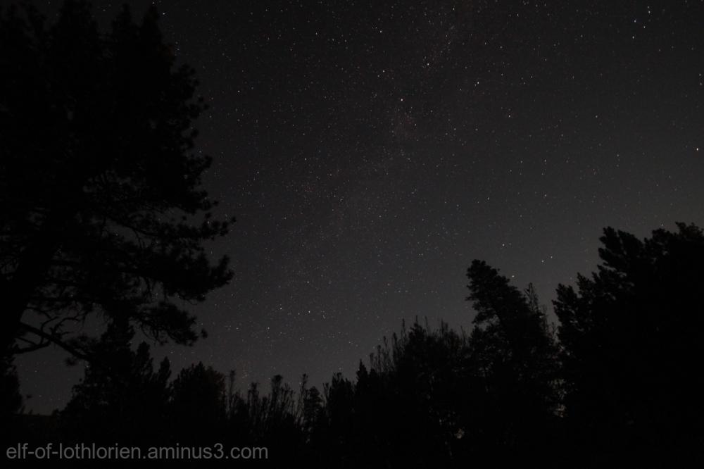 Milky Way (III)