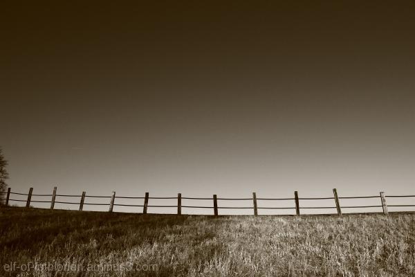 b/w Fence