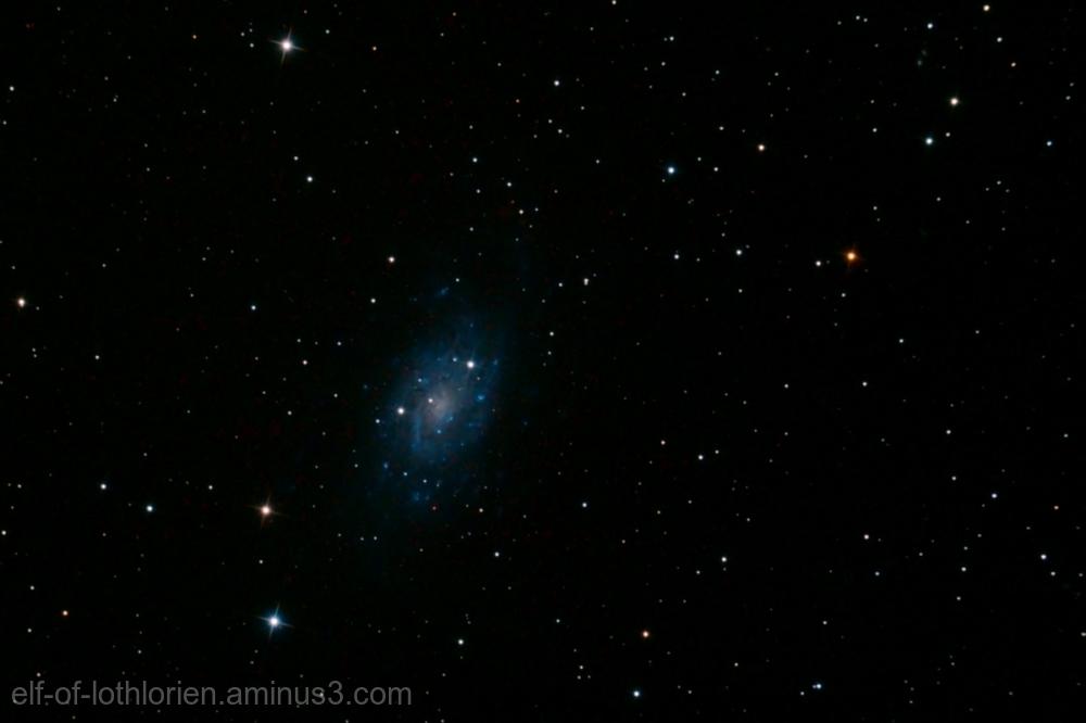 Caldwell 7 / NGC 2403