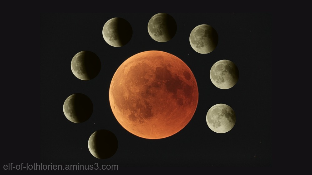 Yesterdays lunar eclipse