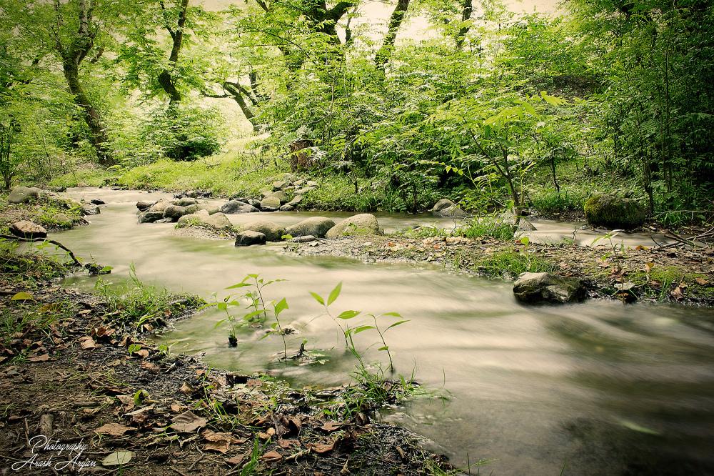 tootki river
