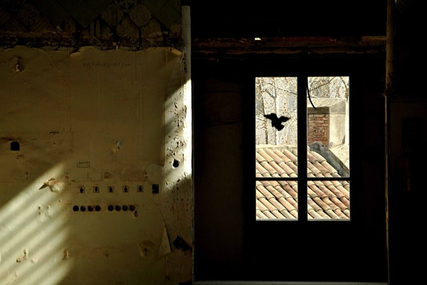 La finestra d'en Salvador