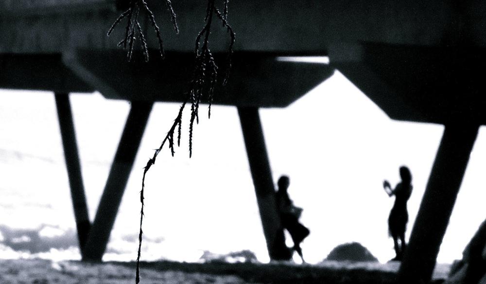 La branqueta del pont