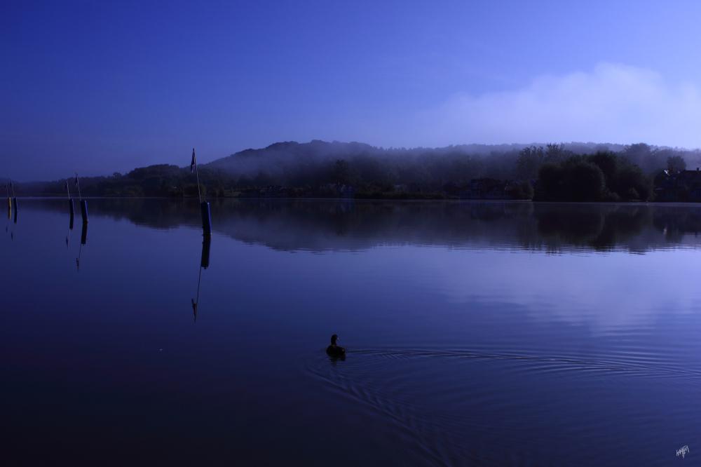 un lac tranquille un matin brumeux