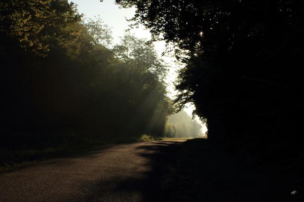une trouée de lumière sur la route