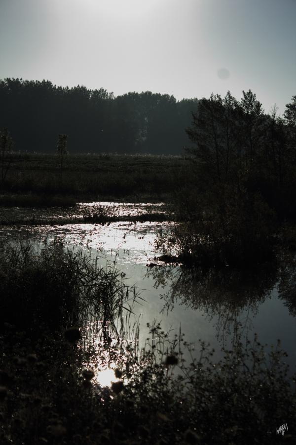 un beau lac un moment tranquille