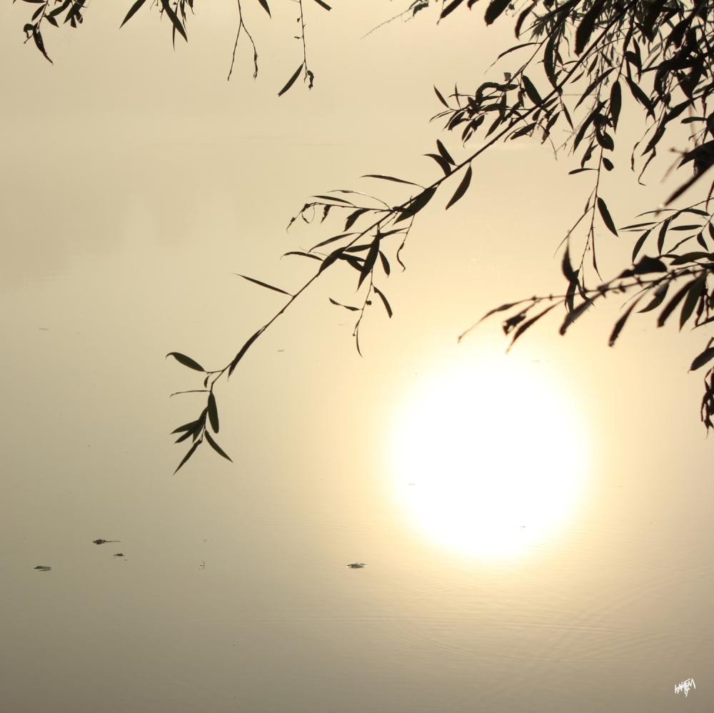 L'eau muée en or un contre-jour, le soleil